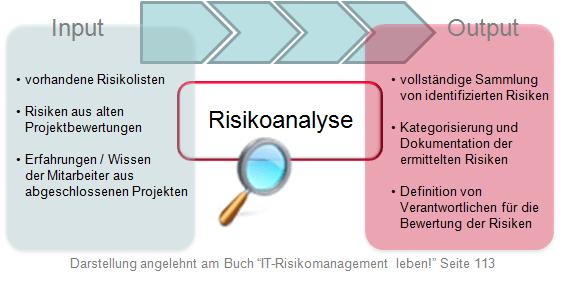 Input und Output der Risikoanalyse