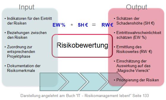 Risikobewertung Input und Output