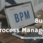 Wissensgebiete der BPM
