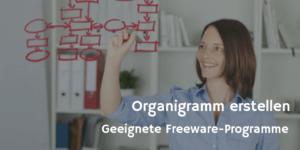 Organigramm Software© contrastwerkstatt