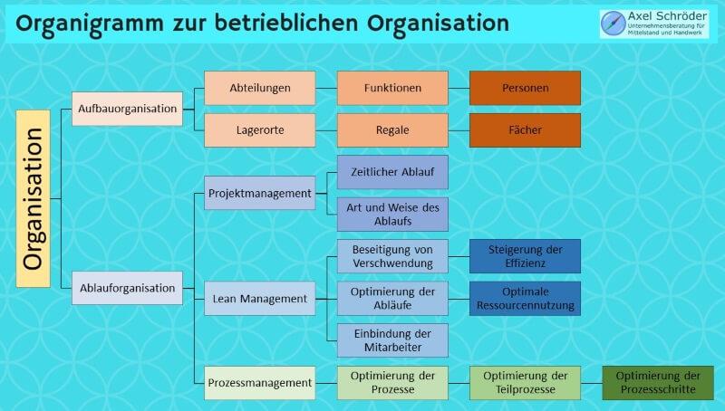 Organigramm Organisation