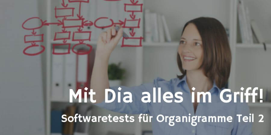 Dia Softwaretest © contrastwerkstatt