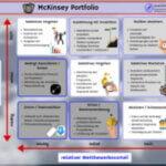 McKinsey Portfolio Vorschau