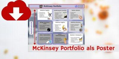 McKinsey Downloadvorschau