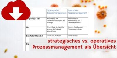strategisches vs. operatives PM Downloadvorschau